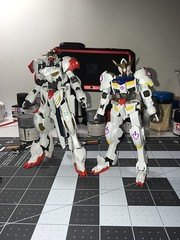 Hg barbatos lupus custom