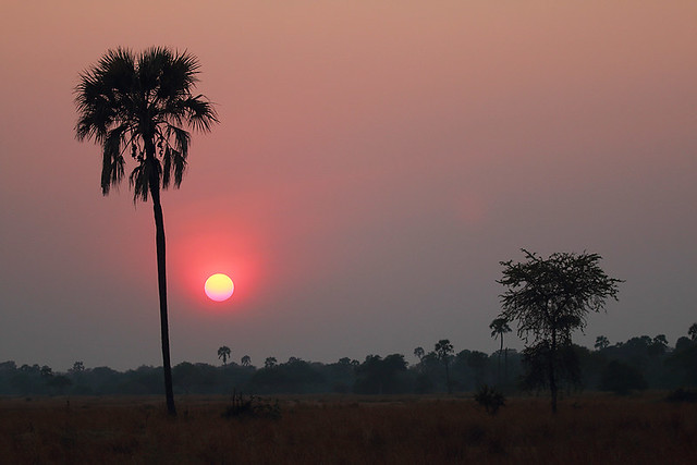 Katisunga sunrise, Katavi National Park, Tanzania