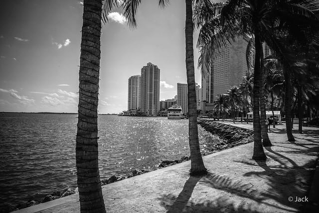 Miami mood - au bord de l'eau #2