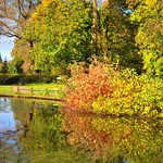 Autumn looking colour at Haslam Park