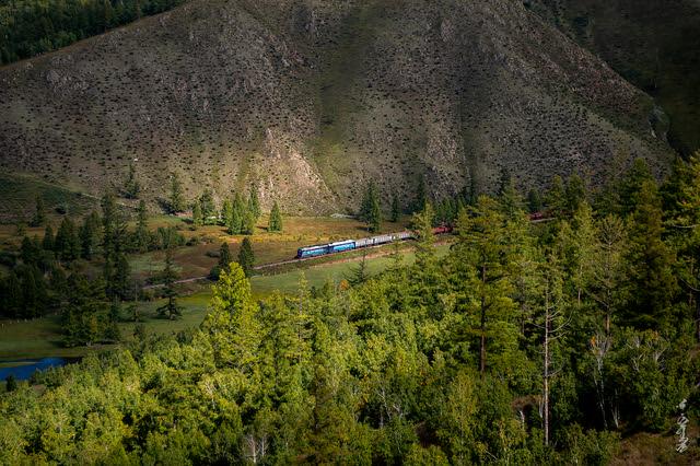 Sunlight & Train ...