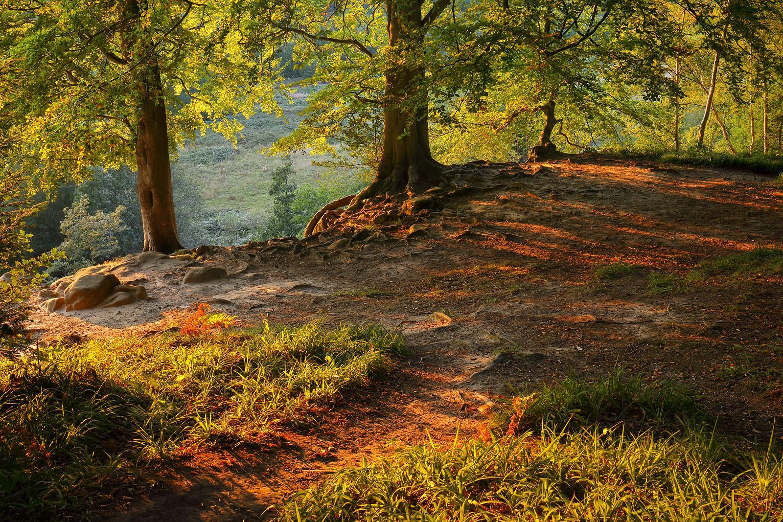 High Weald Rocks, Hot September