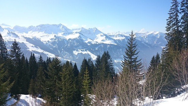 Bregenzerwald Sneeuwschoenwandelen standplaatstocht Oostenrijk