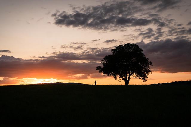 Watching the sun set (explored)