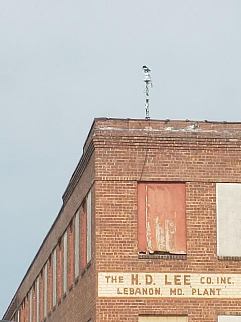 H.D. Lee Building