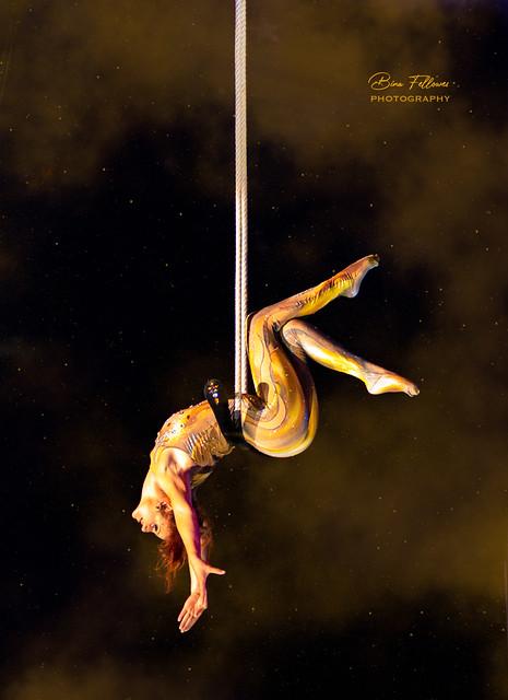 Trapeze Elegance - Fanny Noin
