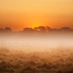 September Sunrise.