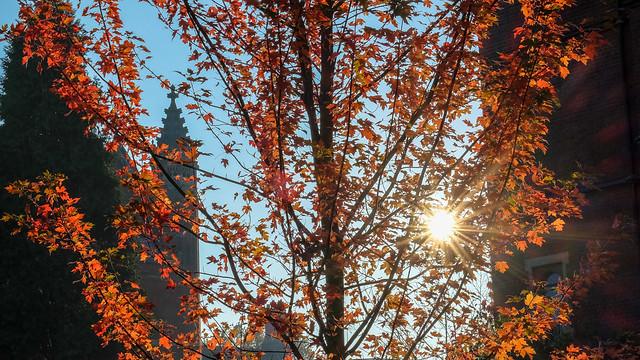 Cambridge in Autumn (Oct)