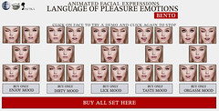 SEmotion Language of Pleasure Emotions HUDs
