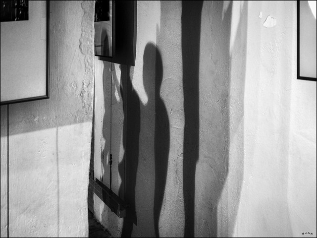 L'ombre admirative...  / The admiring shadow...