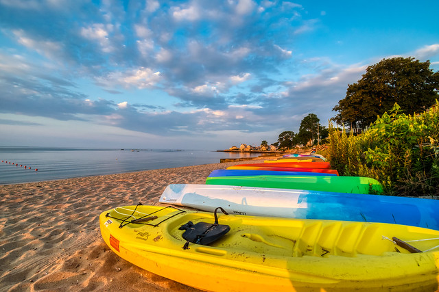 Good Morning Chapman Beach!  (4)