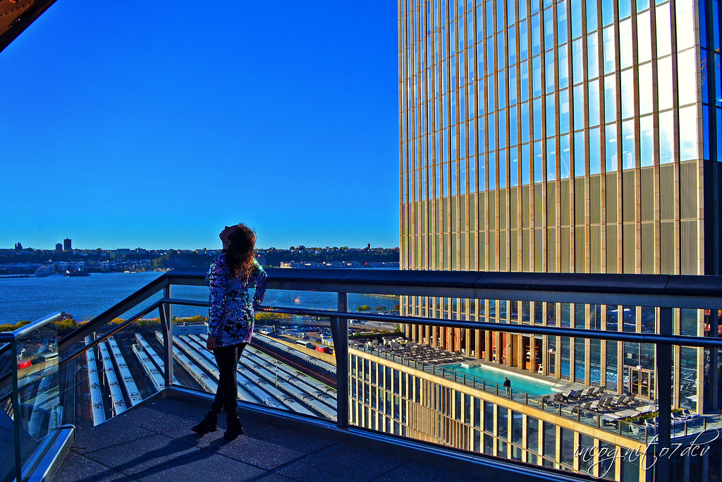 Beautiful Afternoon at The Vessel in Hudson Yards Manhattan New York City NY P00652 DSC_2239