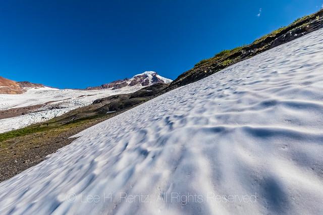 Summer Snowfield Below Heliotrope Ridge
