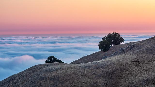 Coastal Fog at Sunset