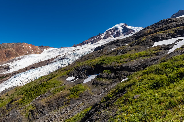 Alpine Meadows and Coleman Glacier on Heliotrope Ridge