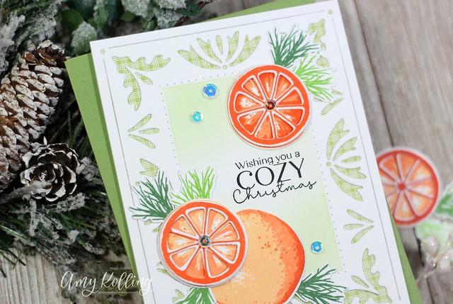 Amy_Sweet Orange Holidays2