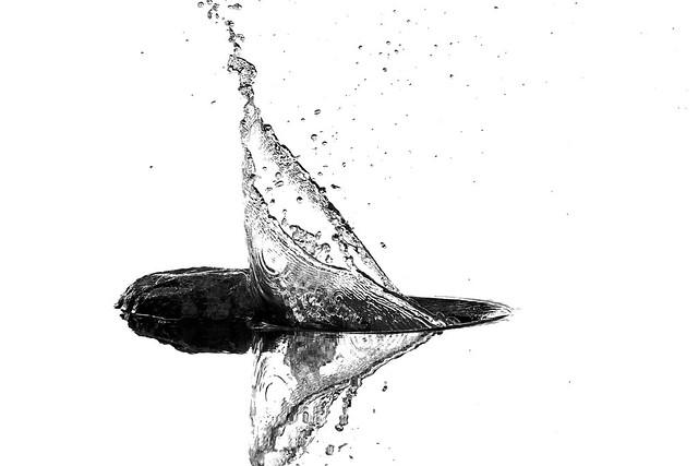 ...giochi d'acqua