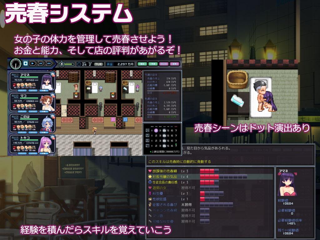 Young Yakuza Boss Ririka's Brothel Management