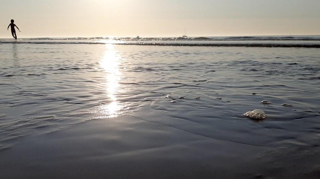 Playa de Ostende al atardecer II