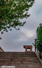 toro del puente romano2