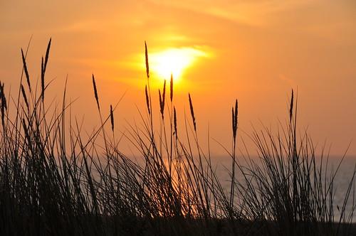 morning suffolk sunrise marram marramgrass silhouette beach pakefield sun sea seaside seashore