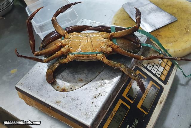 seremban live xxl crab