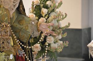 Veneración 14