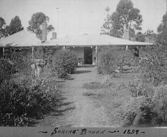 Spring Brook, Lot 706 Edwards Rd McLaren Vale, 1898