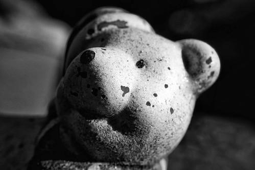 Schwarz Weiß Makro Kunst Fotografie Gesicht Portrait Skulptur Bär.