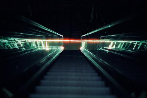 nightvision 36 // cinestill 800t