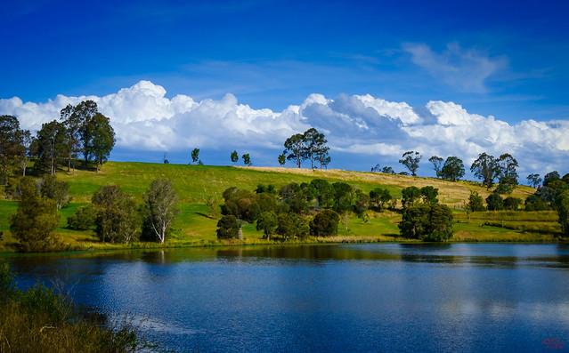 Botanical Garden Sydney Australia