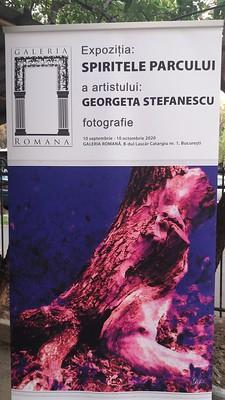 """Expoziţia """"Spiritele parcului"""" - Georgeta Ştefănescu"""