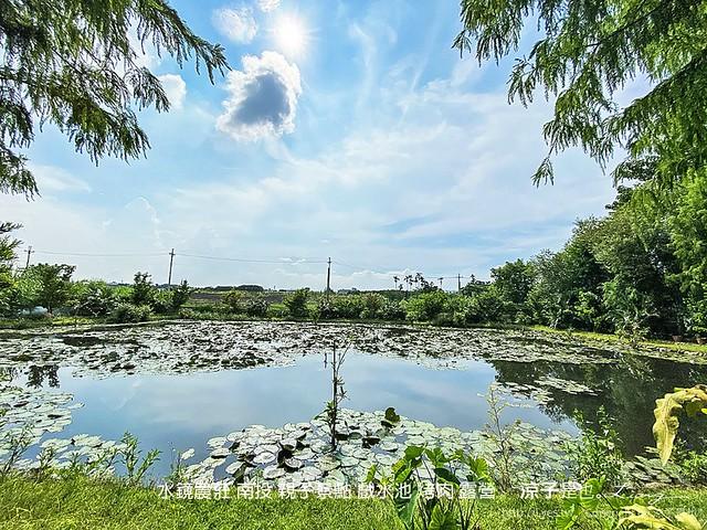 水鏡農莊 南投 親子景點 戲水池 烤肉 露營