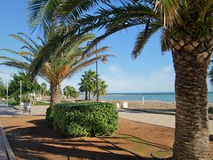 Xilxes playa