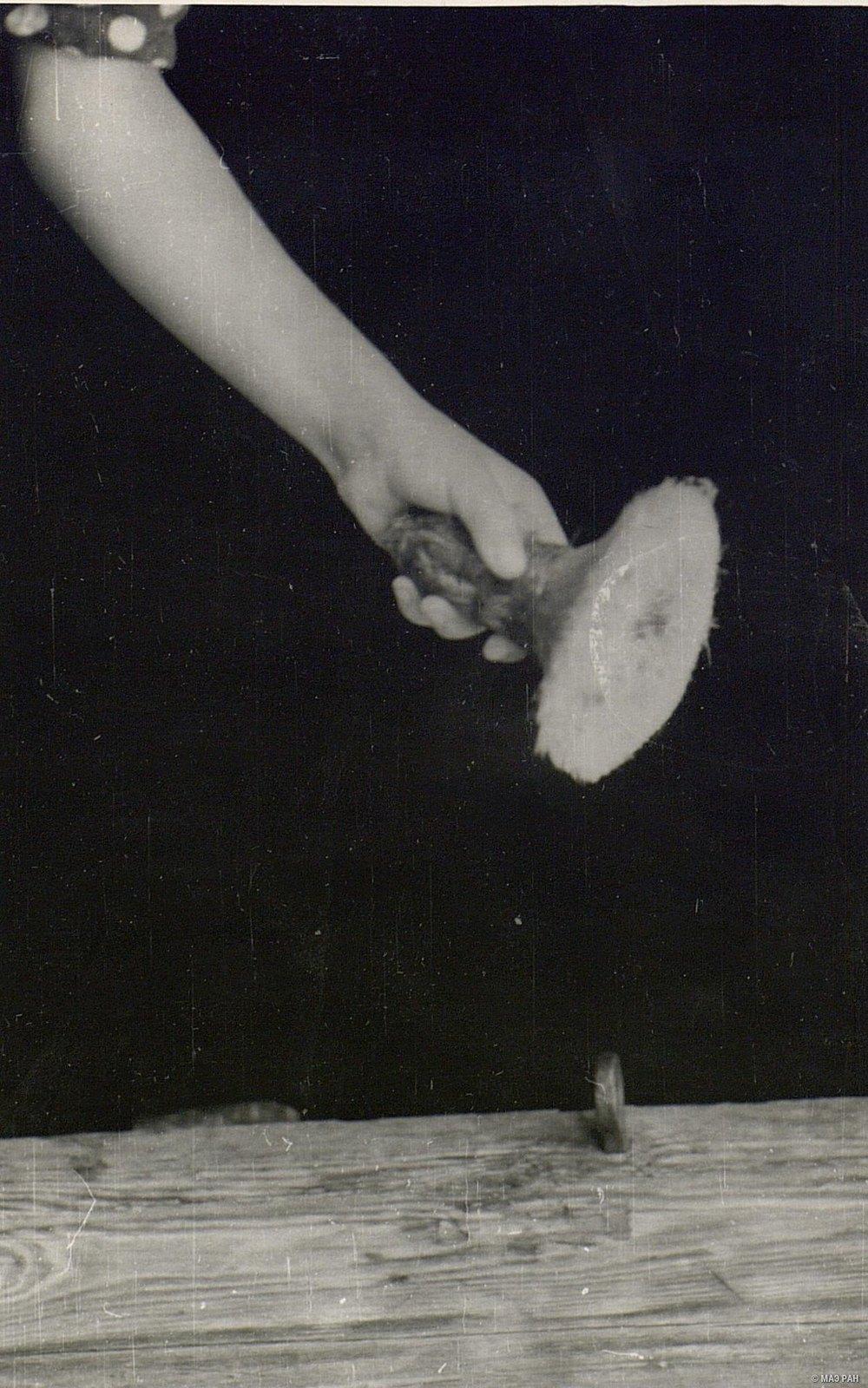 Щетка из свиной щетины для расчесывания кудели