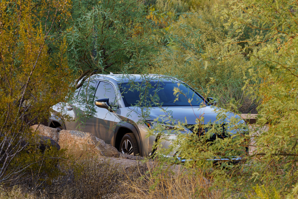 My 2020 Lexus UX250h is visible through the trees at George Doc Cavalliere Park in Scottsdale, Arizona on September 15, 2020. Original: _RAC5865.arw