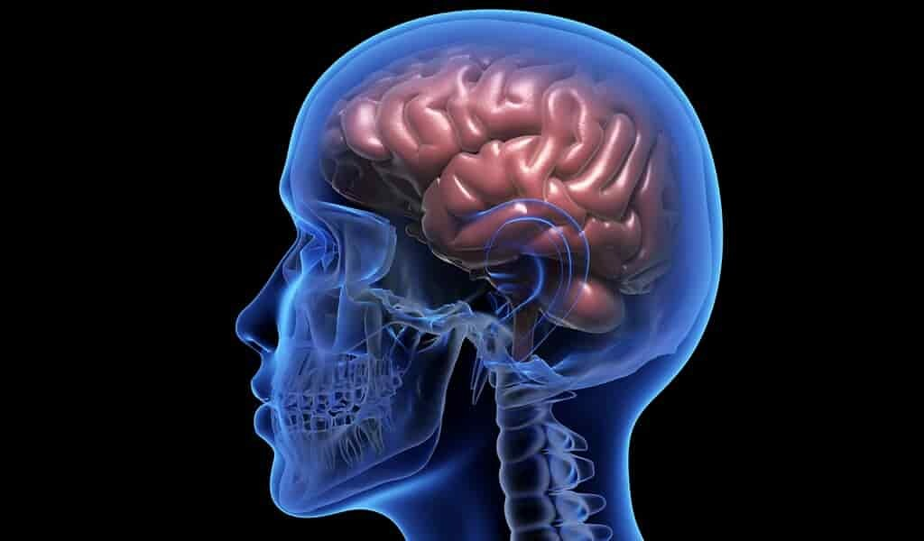 Traiter les troubles neurologiques avec un système de médicaments