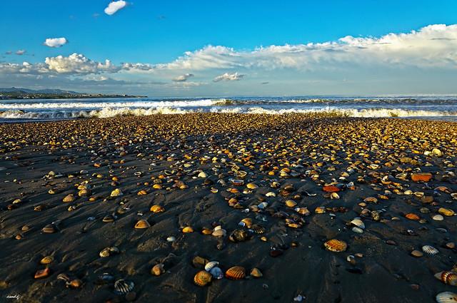 La playa de las conchas. En Explore 18 09 2020
