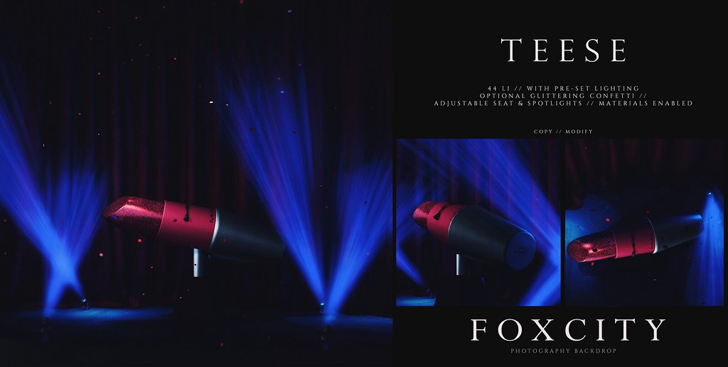 FOXCITY. Photo Booth – Teese
