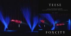 FOXCITY. Photo Booth - Teese