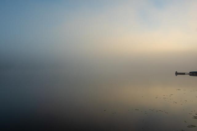 Deep Fog Reflections
