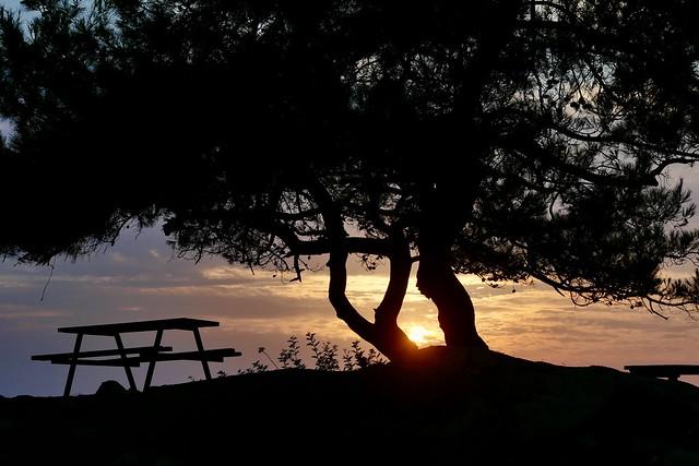 Evening silence