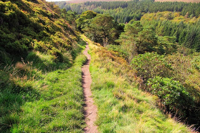 Shooter's Clough, Goyt Valley, Peak District
