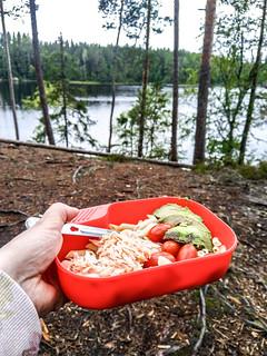 Liesjärvi Ahonnokka