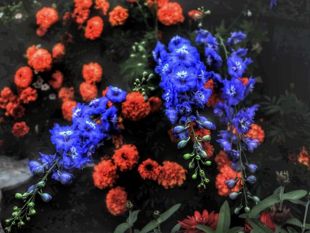 Flowers Bend