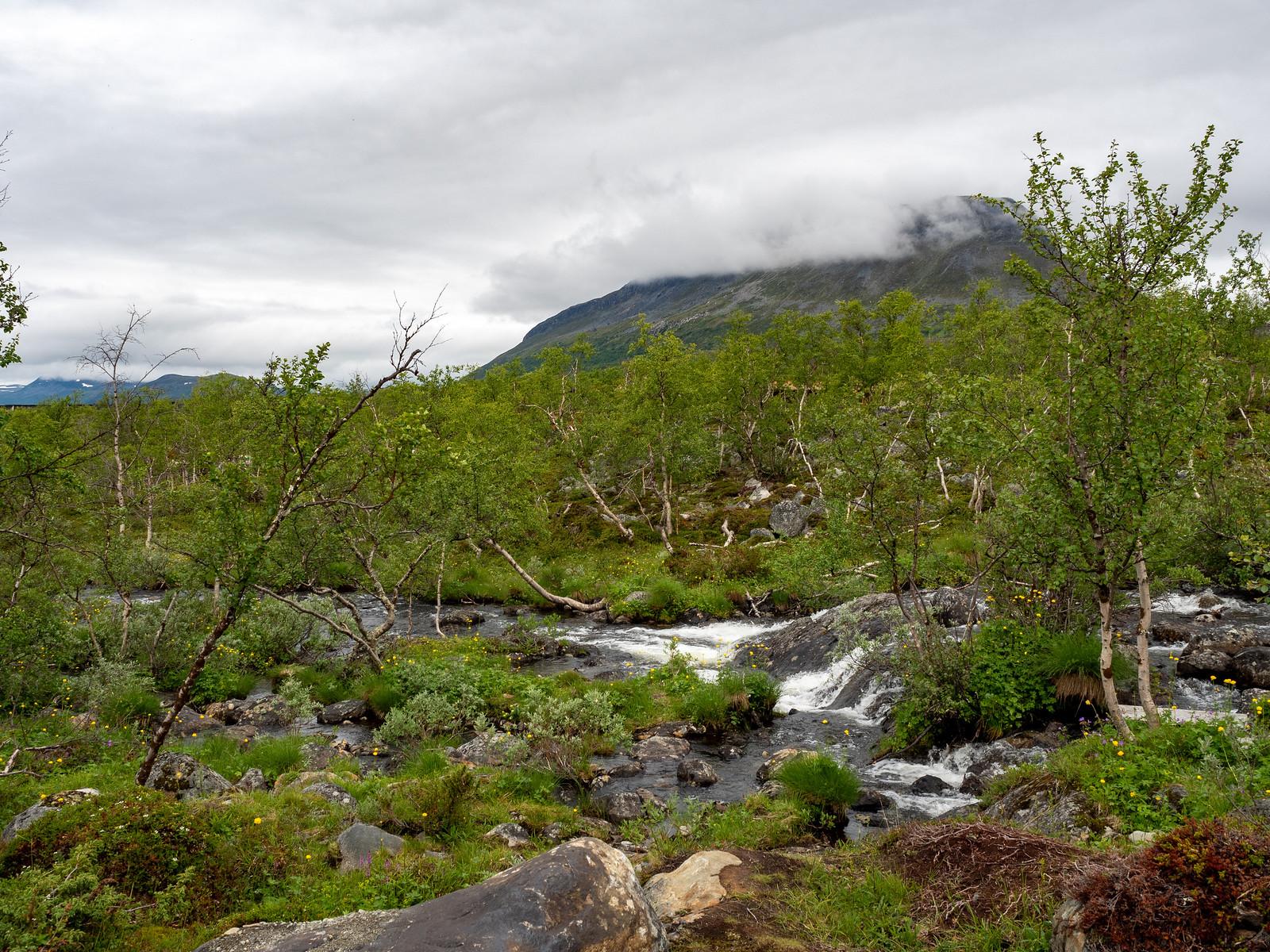 Kilpisjärven Tunturimajat