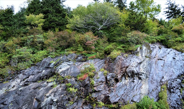 The Rock Outcrop at Wolf Mountain Overlook