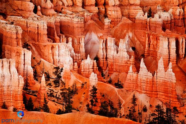 1110_MFA_Utah_025-Edit
