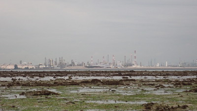 Massive reclamation on Jurong Island off Cyrene Reef, Sep 2020
