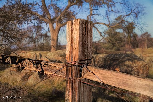 Western Fence (HFF)